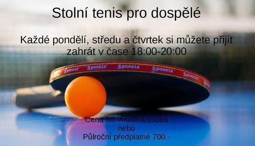 Stolní tenis pro dospělé